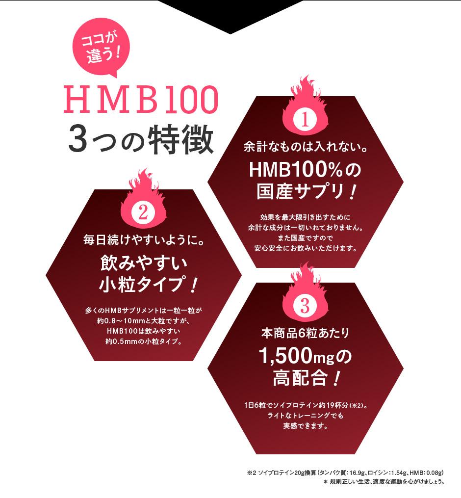 HMB100、3つの特徴